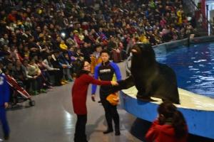 Nanjing Aquarium - Andover Underwater World